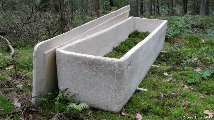 A coffin filled with green matter in a forest