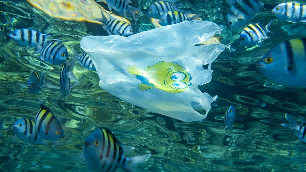 Humanity produces millions of tonnes of plastic waste every year and a large amount of it escapes to pollute natural habitats (Credit: Andrey Nekrasov/Getty Images)