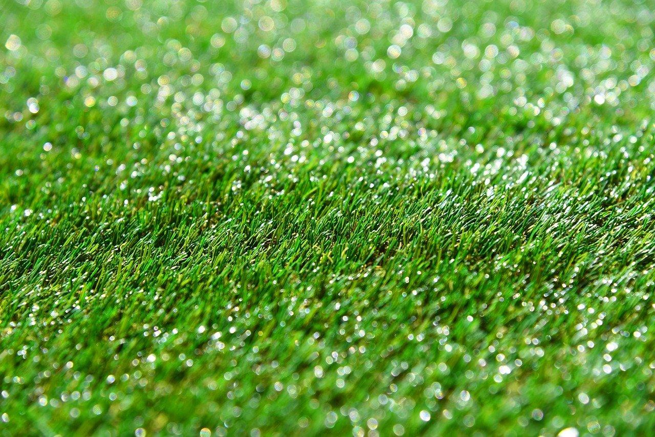 Artificial turf. Photo: Mabel Amber/pixabay